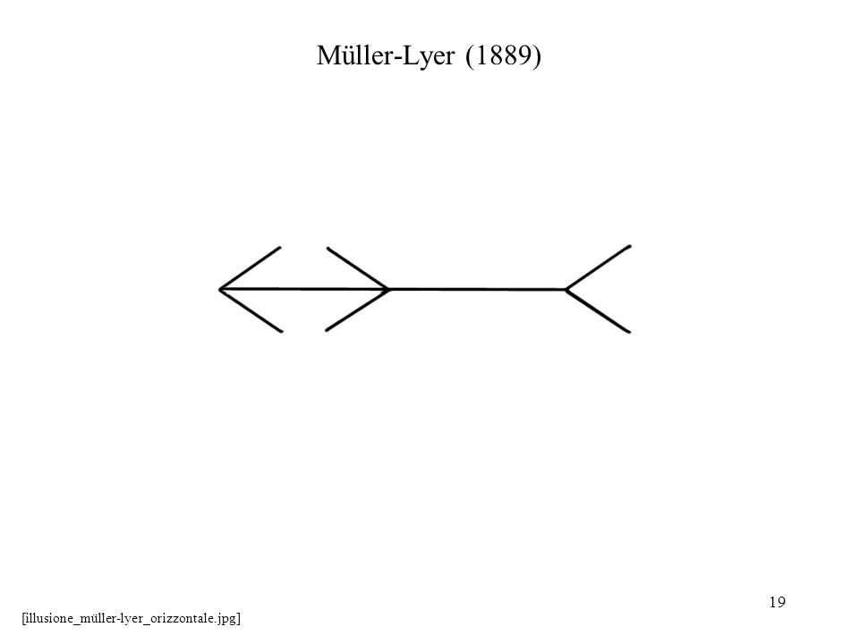 Müller-Lyer (1889) [illusione_müller-lyer_orizzontale.jpg]